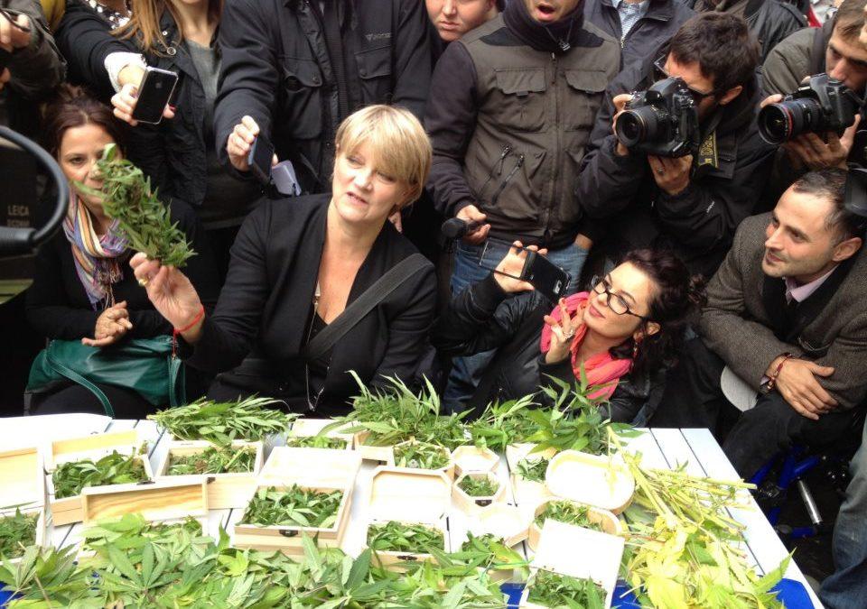 """Rita Bernardini: """"La Procura di Roma è recidiva nei miei confronti"""". Coltiva trenta piante di marijuana sul terrazzo di casa ma non la arrestano"""