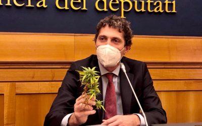 """Intervista a Riccardo Magi. """"No alla politica anti-scientifica e al conformismo culturale sulle sostanze"""""""